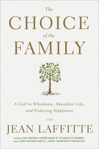 The Choice of the Family Image book cover